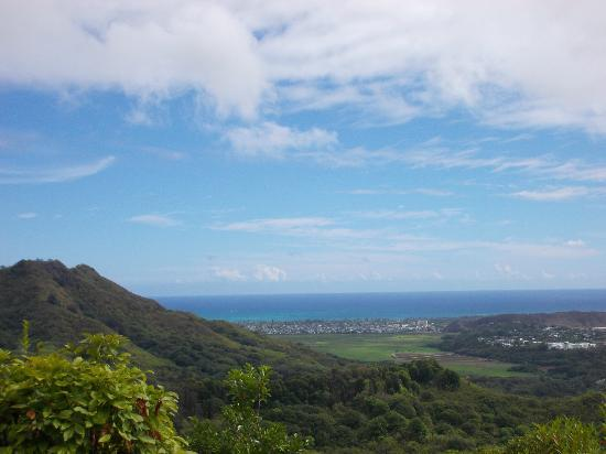 Nuuanu Valley Rain Forest: ocean and valley