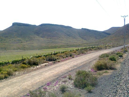 Trans Karoo (Shosholoza Meyl): view