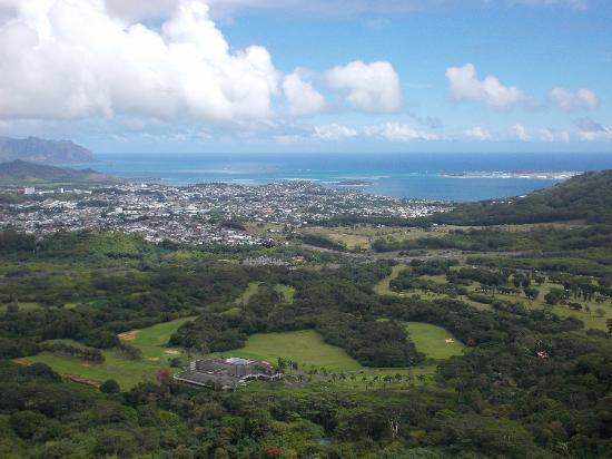 Nuuanu Valley Rain Forest: honolulu