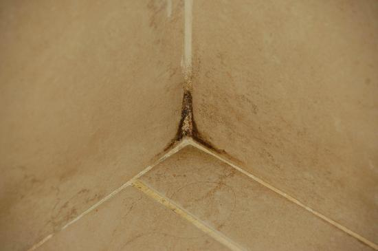 Hotel Promise: Bathroom - mold, hairs not mine