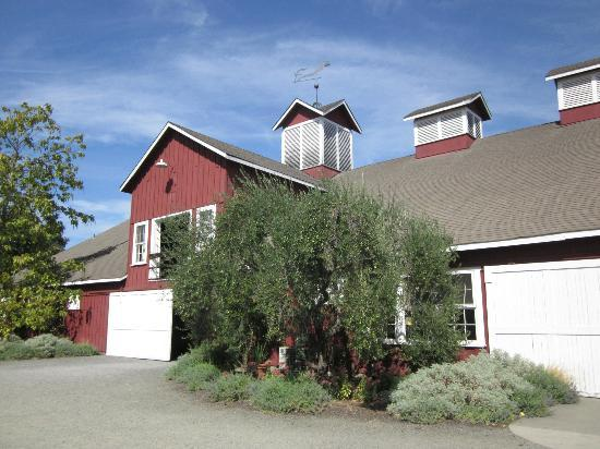 Frog's Leap Winery: Big red barn