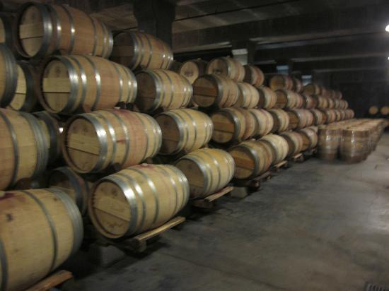 Frog's Leap Winery: Barrel room