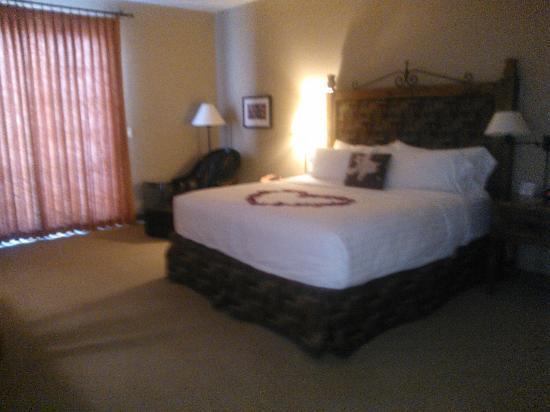 Lodge on the Desert: King Spa Room - Specially made up for honeymoon stay