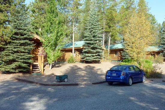 Silverwolf Log Chalet Resort: Overall view of the grounds