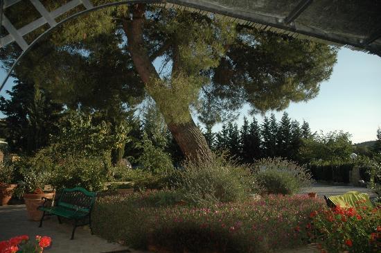 Antico Borgo il Cardino: Tuin naast parkeerplaats