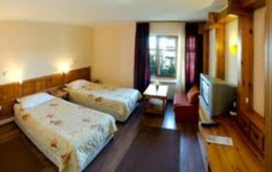 Hotel Bansko : Double room