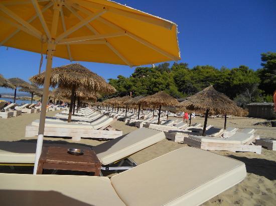 Lassi, Grecia: Bagno Costa.Costa