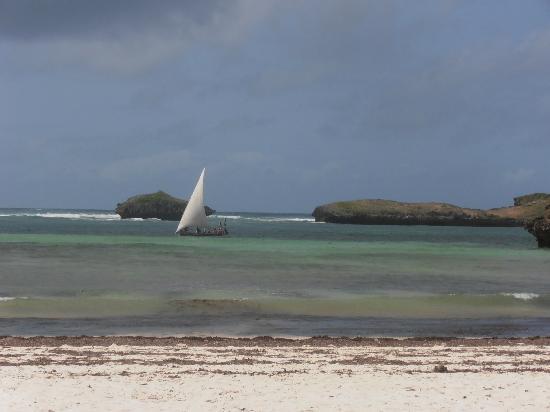 Bianca & Nero: la nostra spiaggia