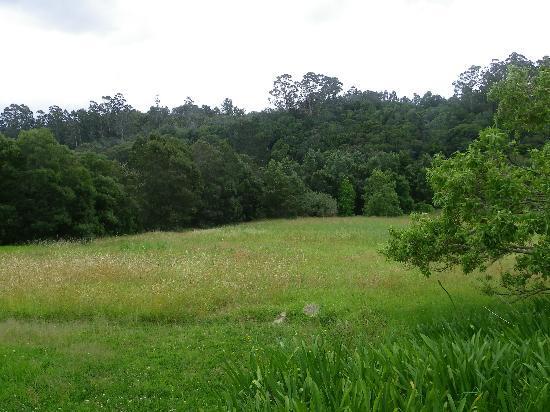 Masescha Country Estate: View of Masescha