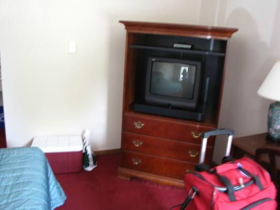 The Swan Motel : Tv