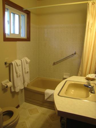 The Swan Motel : Washroom