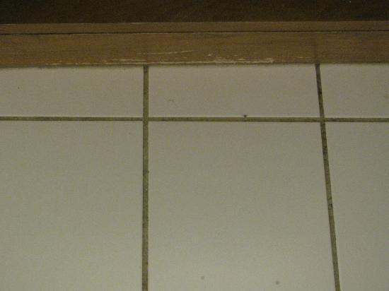 جرينبرير هوتل: Scraped Wood on Front of Bathroom Vanity 