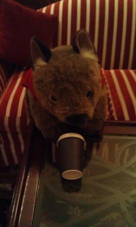 Sir Stamford at Circular Quay Hotel Sydney: Resident Mascot