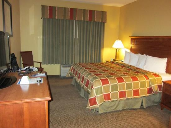 BEST WESTERN PLUS University Park Inn & Suites: bed area