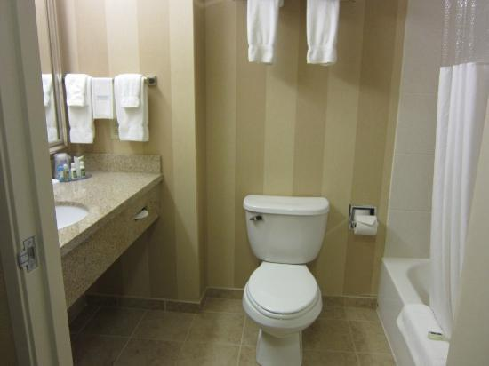 BEST WESTERN PLUS University Park Inn & Suites: bathroom