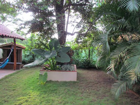 Cafe Limon Hotel: Rear garden