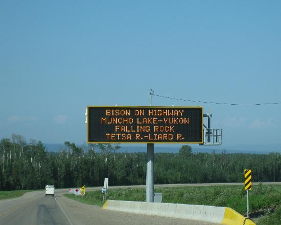 Lighted animal warning sign - Alaska Highway