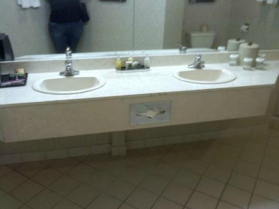 Silver Legacy Resort and Casino: bathroom space 