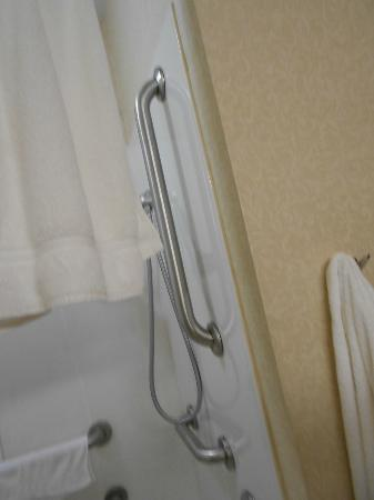 هوليداي إن إكسبريس هوتل آند سويتس شيروكي: shower head 
