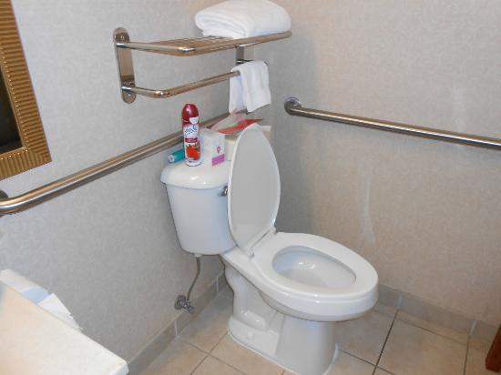 Holiday Inn Express Cherokee/Casino: Bathroom1