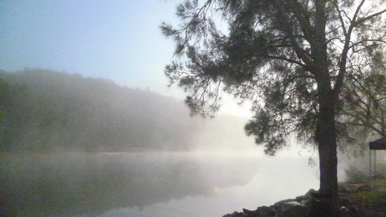 Nelligen, Australien: Early morning serenity. Powered site on the creek.