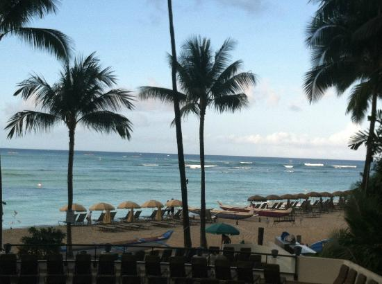 Hula Grill Waikiki : View in the morning!