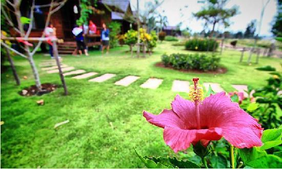 Photo of NonZee RimTarn Nakorn Ratchasima