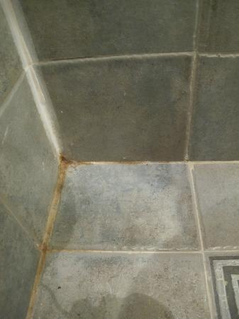 Li An Lodge: Floor of bathroom