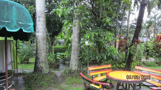 Baan Bua Guesthouse: Garden area