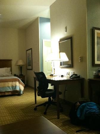 Homewood Suites by Hilton Wilmington/Mayfaire: desk area