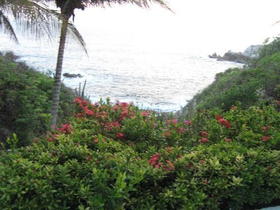 Villas Coral: JARDINES