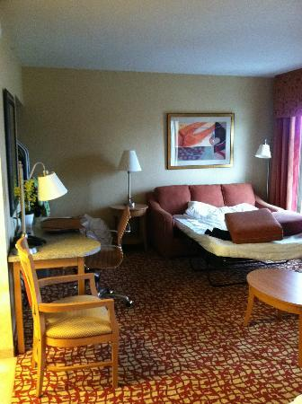Hampton Inn & Suites Raleigh-Durham Airport-Brier Creek: pull-out couch