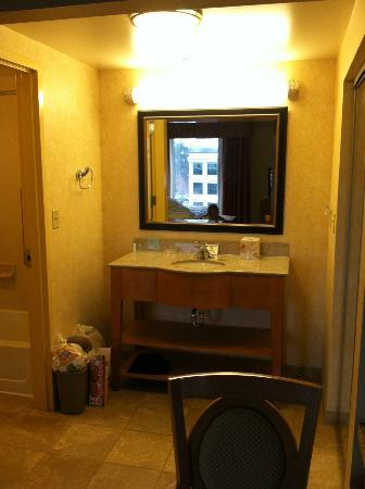 Hampton Inn & Suites Raleigh-Durham Airport-Brier Creek: bathroom vanity area