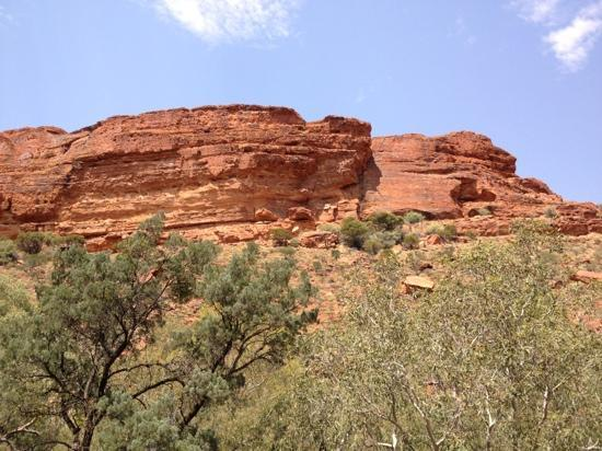 Kings Canyon Resort: Kings Canyon