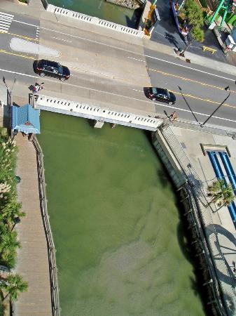 Westgate Myrtle Beach Oceanfront Resort: View from Balcony