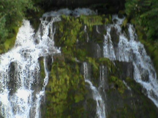 Proxy Falls: upper falls, 1/4 mile up from lower falls
