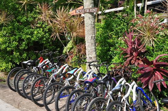 Pangkor Island Beach Resort: Bicycle Rental