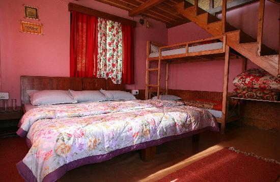 Camp Himalayan : Family Cottage