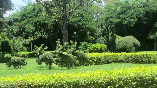 سينتارا جراند بيتش ريزورت آند فيلاس هوا هين: Immaculate Gardens and grounds