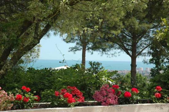 Colle Moro Resort - B&B Villa Maria: Il nostro punto di vista
