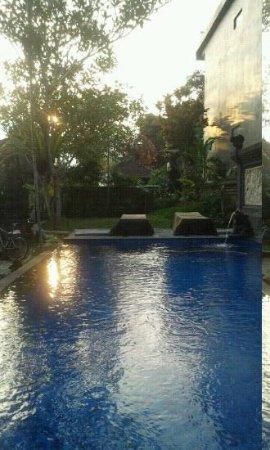 Warji House 2 : Pool