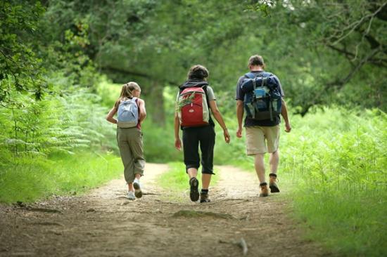 Agriturismo Le Dolci Colline: Trekking a piedi nei sentieri circostanti