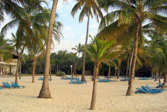Sandies Coconut Village: Spiaggia