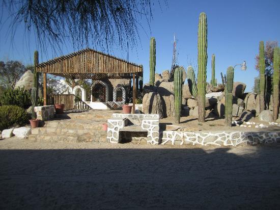 Desert Inn Catavina : Hotelgarten (!)