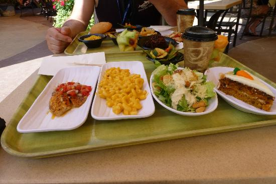 Discovery Cove Food Reviews