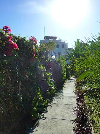 Mikaso Hotel Resto: Mikaso walkway