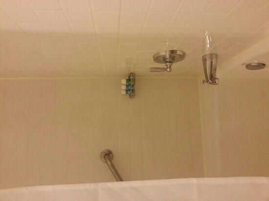 W นิวยอร์ก ยูเนี่ยน สแควร์: clean, Large bathrooms... a plus in NYC