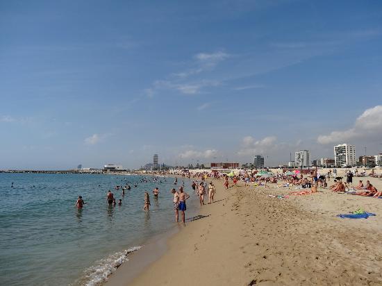 Nova Mar Bella Beach (Barcelona): Top Tips Before You Go  UPDATED 2017