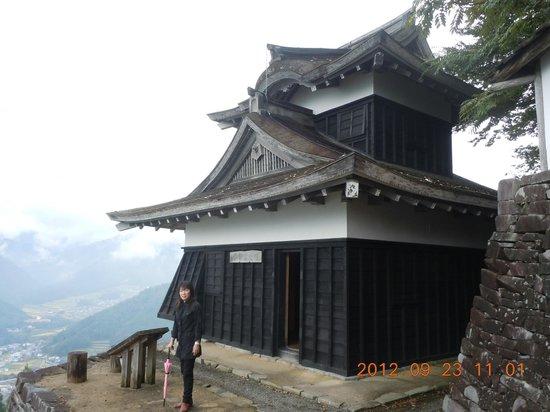 Shiso, Japonia: 城、石垣、下の町並み