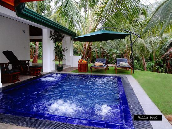 Brook Boutique Hotel & Spa: Villa Pool
